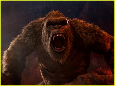 Godzilla vs Kong photo