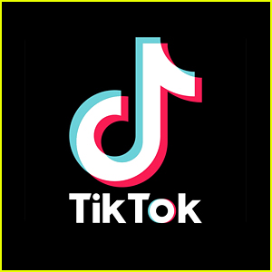 Two TikTok Stars Are Being Romantically Linked!