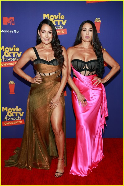Brie and Nikki Bella on red carpet at the MTV Movie and TV Awards Unscripted